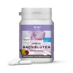 Kaugummi 41 Fokus Lemon Pharma Original Bachblüten Bach flowers Wachsam und Beständig Xylit Vegan Bachblüten Kaugummis