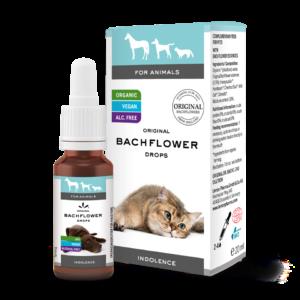 Bachflower pet drops inactivity dr. Bach Lemon Pharma